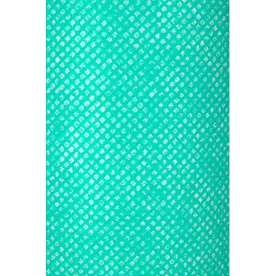 Pk2 Dia WipeC/FdRoll 663 Sheet Green