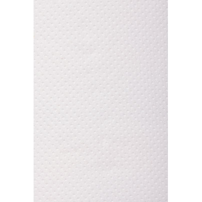 Rolls of Arco PaperTowels 2Ply White 110 metre x 21.5 cm (Pack of 6 Rolls)