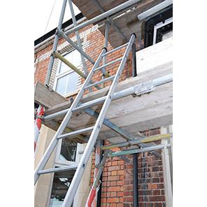 TB Davies Steel Pole Ladders